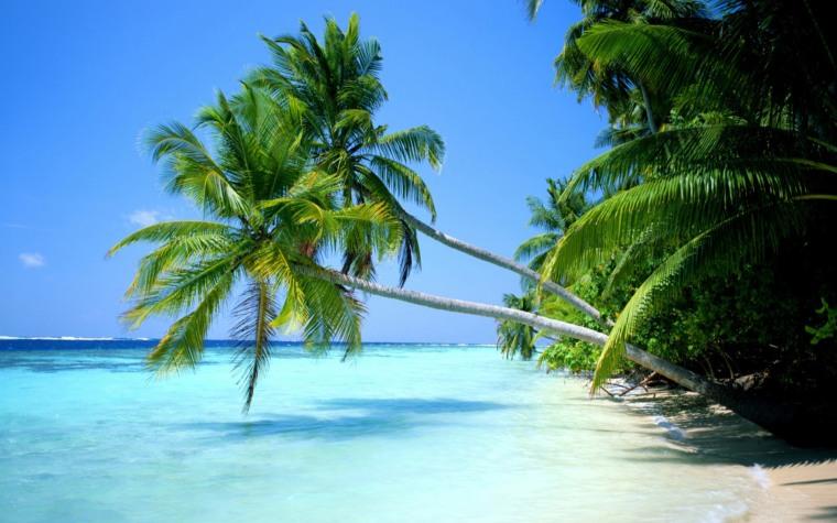 amanacer de playa